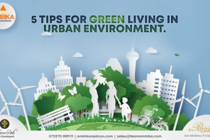 5 Tips for green living in urban environment.