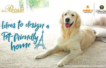 Ideas to Design a Pet-Friendly Home