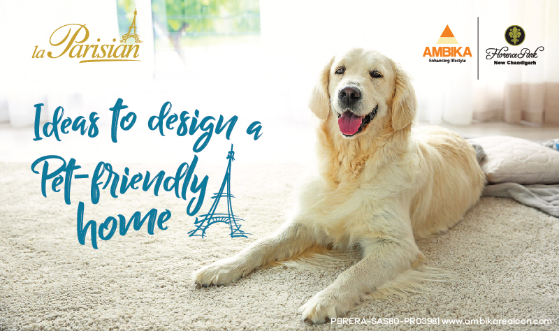 Ideas to Design a Pet-Friendly Home